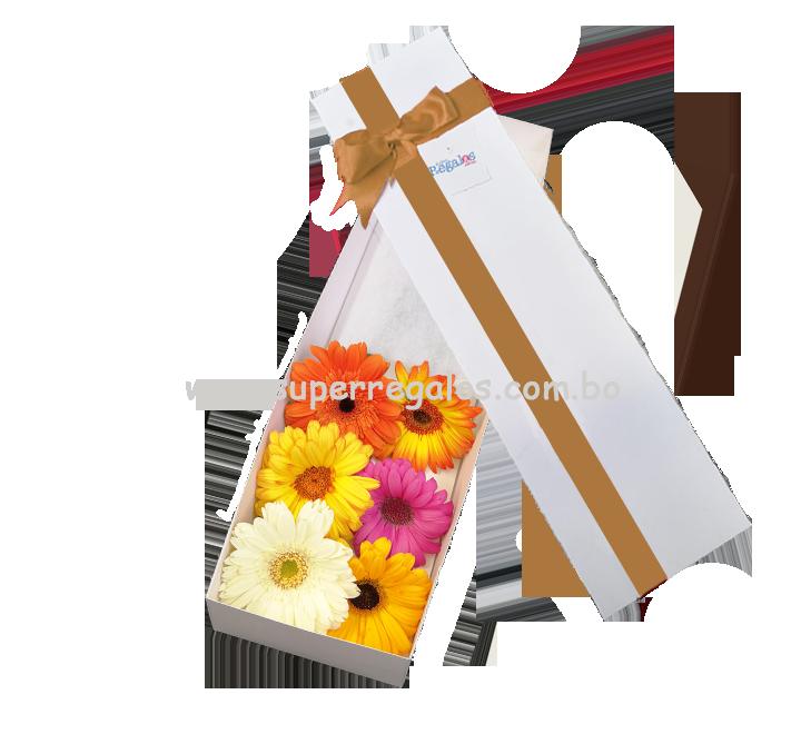 Caja con 6 gerberas - 0021