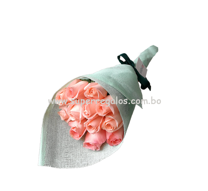 Ramo de 12 rosas Rosadas