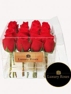 Caja acrílica con 16 rosas - Luxury Roses