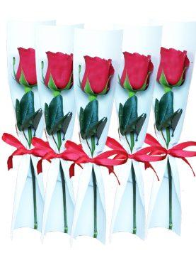 Corporativo 5 Rosas individuales